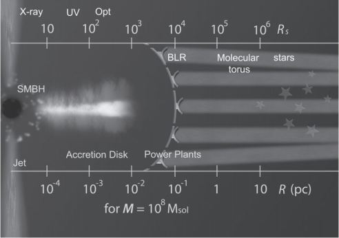 Schematic picture around SMBH. Items are not to scale. In this picture, an example of power plants with transmitters is shown partly. BLR stands for the Broad Line Region. The SMBH and accretion disk will not be fully covered by the collectors of power plants, so as not to prevent jets emanating from somewhere in this area, and accretion flow coming out of the central region. A twin jet is thought to emanate perpendicular to the plane of accretion disk, seen about 10% of AGN. The energy from the power plants is transferred by electro-magnetic waves to habitats of advanced civilizations. In this picture, the beams are directed to a galactic plane on which a galactic club is formed. However, the planes of the accretion disk and the host galaxy may not necessarily be in the same plane