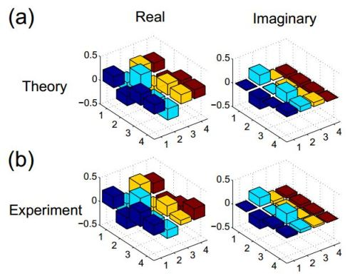 (Color online). The real and imaginary parts of (a) the theoretically calculated density matrix elements after nine steps of evolution without double well potential; (b) the experimental density matrix elements reconstructed by QST after nine steps of evolution without the double well potential.