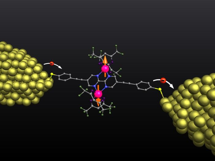 The molecule of about 2 nm in size is kept stable between two metal electrodes for several days. (Figure: Christian Grupe/KIT)