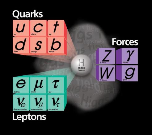 Illustration of Standard Model particles. (Credit: Image courtesy of DOE/Fermi National Accelerator Laboratory)