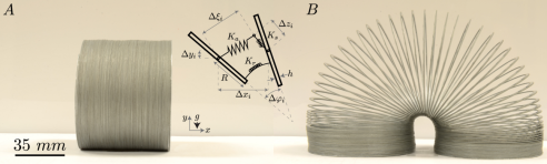 (A) A Slinky on a  at surface in two stable states, and (B) an accompanying schematic showing bar i (on left) and bar i + 1 (on right) for the discrete model, along with displacements and axial, rotational, and shear springs.