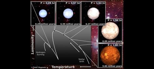 A composite image detailing the pre-life story of a star like the Sun, spanning about 10 million years from conception to birth.