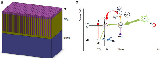 Structure and mechanism of the plasmon-assisted radiolytic water splitter