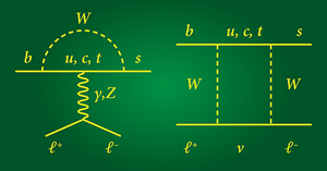 "These two Feynman diagrams represent the interactions that lead to a bottom quark decaying to a strange quark and a pair of oppositely charged leptons (an electron and an antielectron or a muon and an antimuon)—a ""flavor-changing neutral current"" process that is allowed in the standard model but is extremely unlikely. As far as the standard model is concerned, the interactions that produce the lepton pairs are the same for electron pairs and muon pairs. This idea, known as lepton universality, is being challenged by a new measurement by the LHCb collaboration."