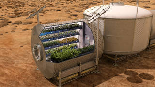 NASA plans to grow food on future spacecraft and on other planets as a food supplement for astronauts. Fresh food, such as vegetables, provide essential vitamins and nutrients that will help enable sustainable deep space pioneering. Credits: NASA