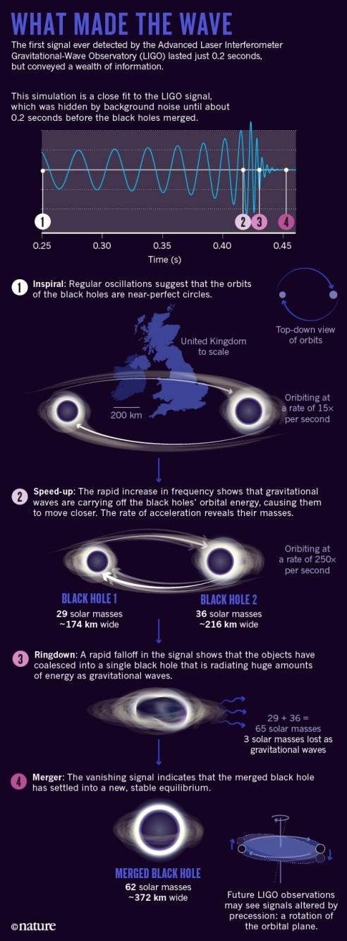 after-LIGO-feature-online