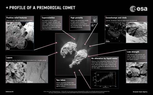 Profile_of_a_primordial_comet